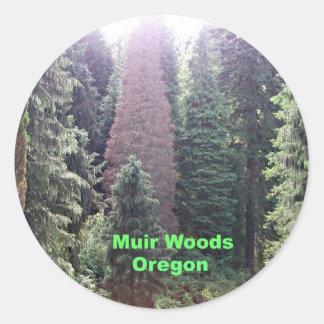 Muir Woods, Oregon Classic Round Sticker