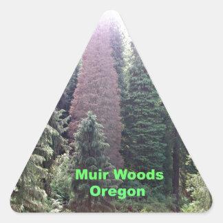 Muir Woods, Oregon Triangle Sticker
