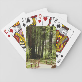 Muir Woods Path I California National Monument Playing Cards