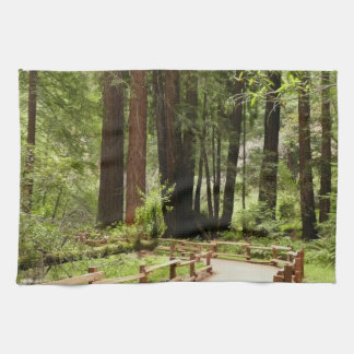Muir Woods Path I Hand Towel