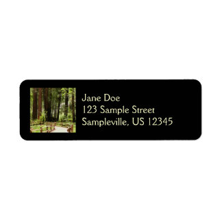 Muir Woods Path I Label