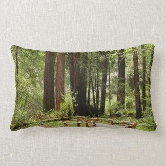 Muir Woods Path I Lumbar Pillow