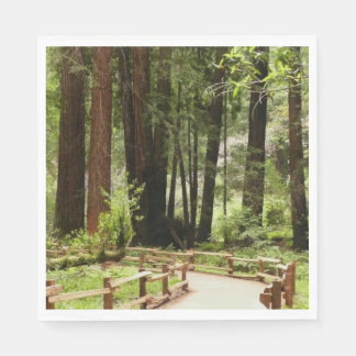 Muir Woods Path I Napkin