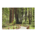 Muir Woods Path I Placemat