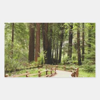 Muir Woods Path I Rectangular Sticker