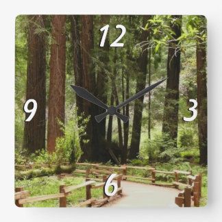 Muir Woods Path I Square Wall Clock