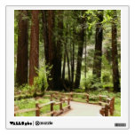Muir Woods Path I Wall Sticker