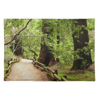 Muir Woods Path II California National Monument Cloth Placemat