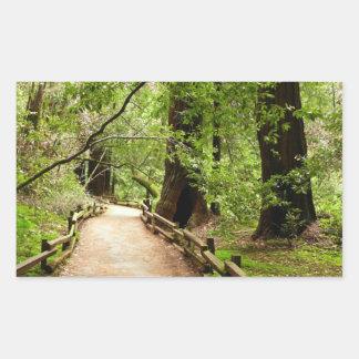 Muir Woods Path II California National Monument Rectangular Sticker