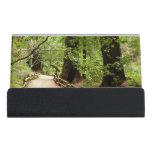 Muir Woods Path II Desk Business Card Holder