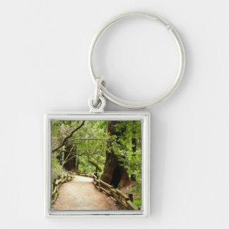 Muir Woods Path II Keychain