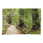Muir Woods Path II Nature Photography Kitchen Towel