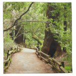 Muir Woods Path II Nature Photography Napkin