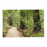 Muir Woods Path II Nature Photography Placemat