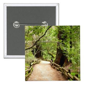Muir Woods Path II Pinback Button