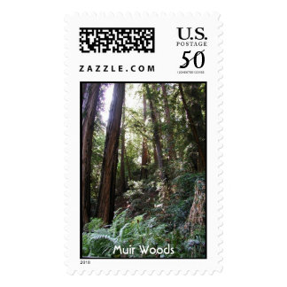 Muir Woods - Redwood Trees Postage