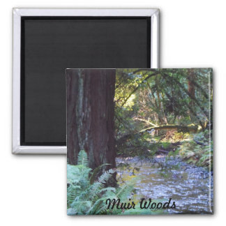 Muir Woods Stream 2 Inch Square Magnet