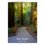 Muir Woods Walkway California Products Greeting Card