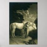 Mujer con el caballo blanco póster