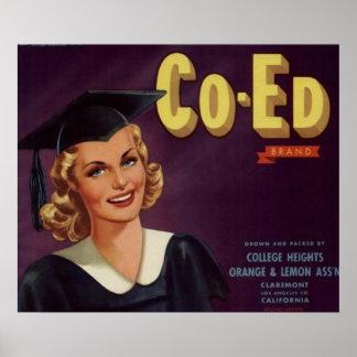 Mujer de la graduación de Co-Ed de la universidad  Póster