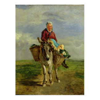 Mujer del país que monta un burro postales
