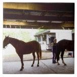 Mujer madura que se ocupa el caballo azulejo cuadrado grande
