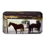 Mujer madura que se ocupa el caballo iPhone 3 protectores