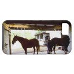 Mujer madura que se ocupa el caballo iPhone 5 Case-Mate cárcasa