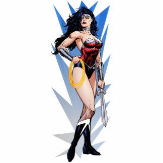 Mujer Maravilla y espada Fotoescultura Vertical
