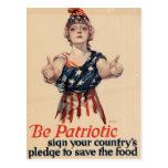 Mujer patriótica del vintage postal