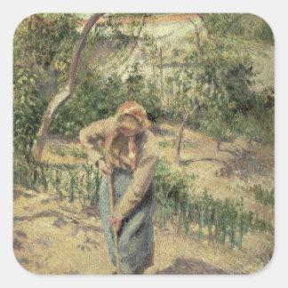 Mujer que cava en una huerta, 1882 pegatina cuadrada