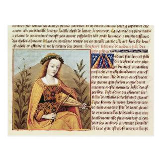 Mujer que juega un viol postales
