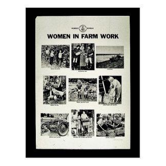 Mujeres en trabajo de la granja postales