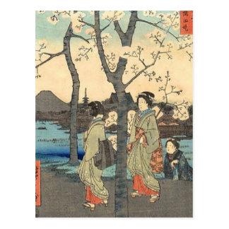 Mujeres japonesas antiguas debajo de las flores de tarjetas postales