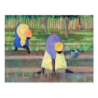 Mujeres que cultivan un huerto 2005 tarjeta postal
