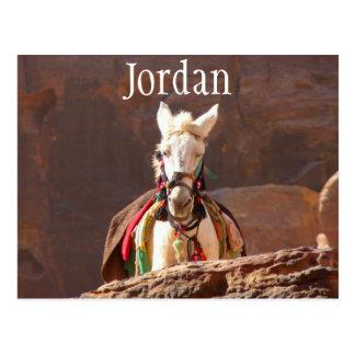 Mula blanca, postal de Jordania