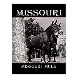 Mula de Missouri Postal