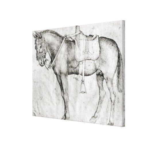 Mula, del álbum de Vallardi Impresión En Lona