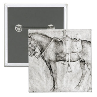 Mula, del álbum de Vallardi Pin Cuadrada 5 Cm