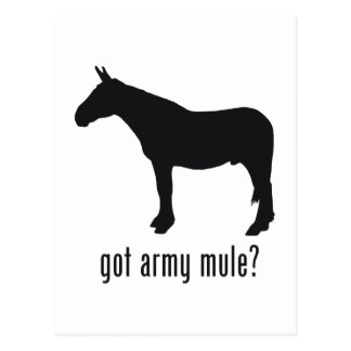 Mula del ejército postal