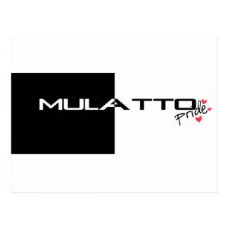 Mulatto Pride Postcards