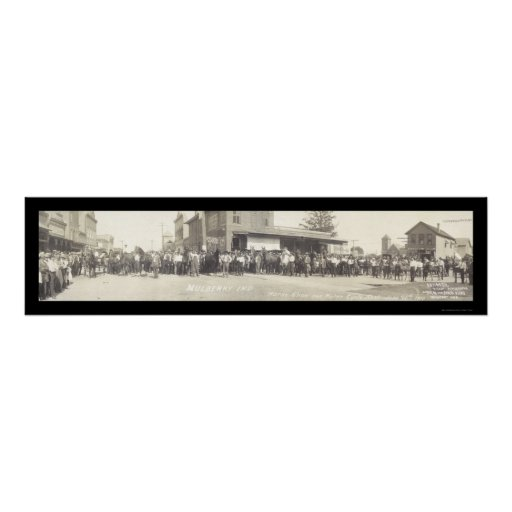 Mulberry IN Horse Show Photo 1910 Print
