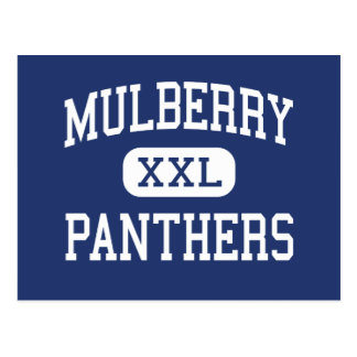 Mulberry - Panthers - High - Mulberry Florida Postcard