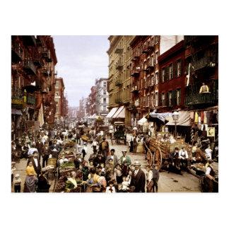Mulberry Street Postcard
