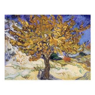 Mulberry Tree, 1889 Post Card