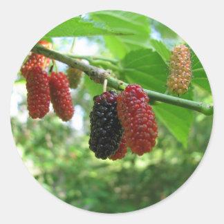 Mulberry Tree Classic Round Sticker
