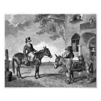 Mule and Donkey Black and White Photo Print