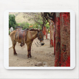 Mule and red poles. mouse pad