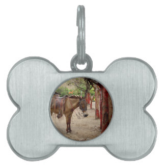 Mule and red poles. pet name tag