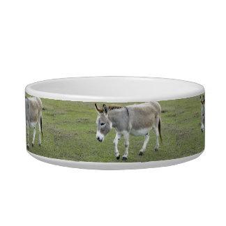 Mule Bowl
